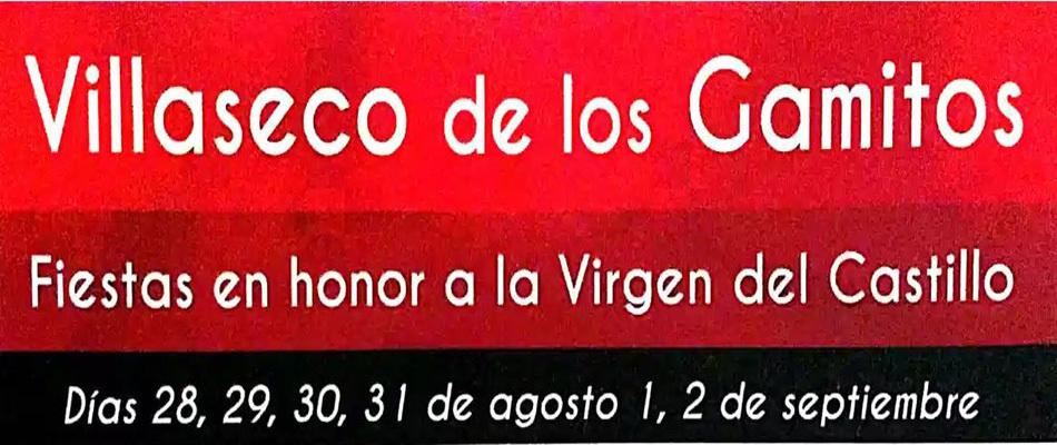 Videos Fiestas 2019 en honor a la Virgen del Castillo