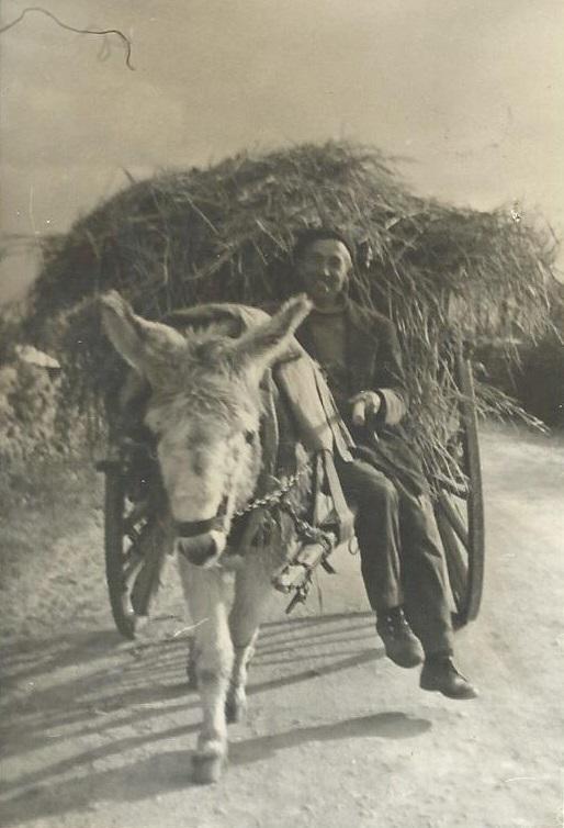 labores del campo en villaseco de los gamitos